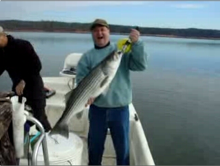 Click To See Lake Allatoona Georgia Fishing Guide Service Striper Fishing Videos!